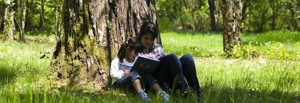 Woman Girl Reading slider