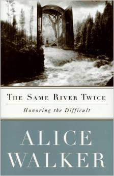 The Same River Twice: A Memoir book graphic